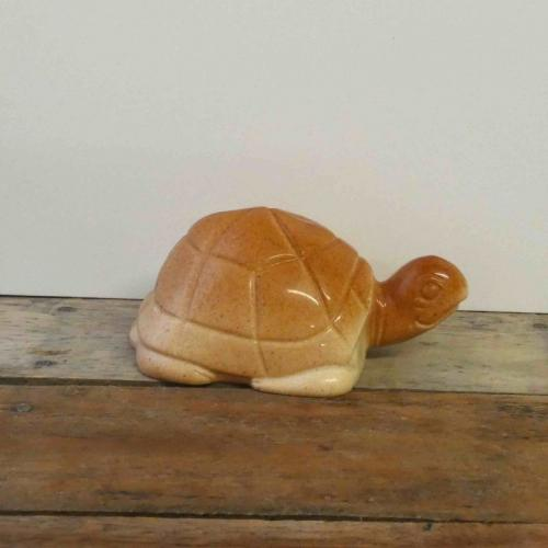 Tortue blanche